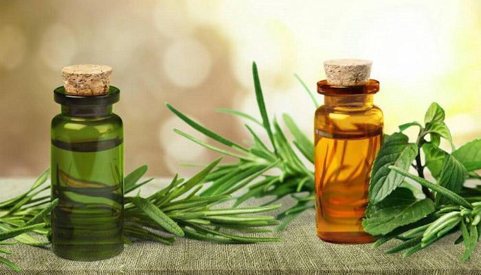 روغن درخت چای برای درمان خانگی خارش سر