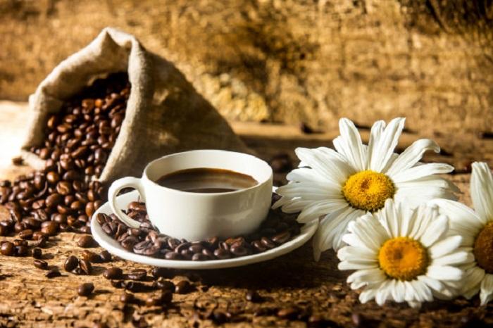 قهوه و بابونه و حنا